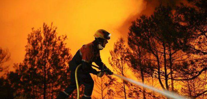 წაღვერის ტყეში გაჩენილი ხანძრის გამო, მოსახლეობის ევაკუაცია არ იგეგმება – ცეცხლს ვერტმფრენითაც ებრძვიან